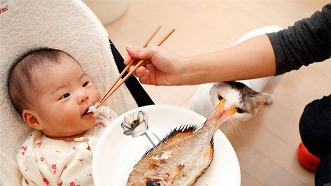 Cho trẻ ăn cá ít nhất 1 tuần 1 lần, kết quả hơn cả mong đợi - Ảnh 1.