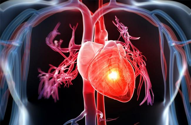 Đây là phao cứu sinh cho người bị huyết áp-2