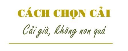 nhung meo cuc hay giu cho dua cai muoi chua luon vang gion khong bi khu - 3