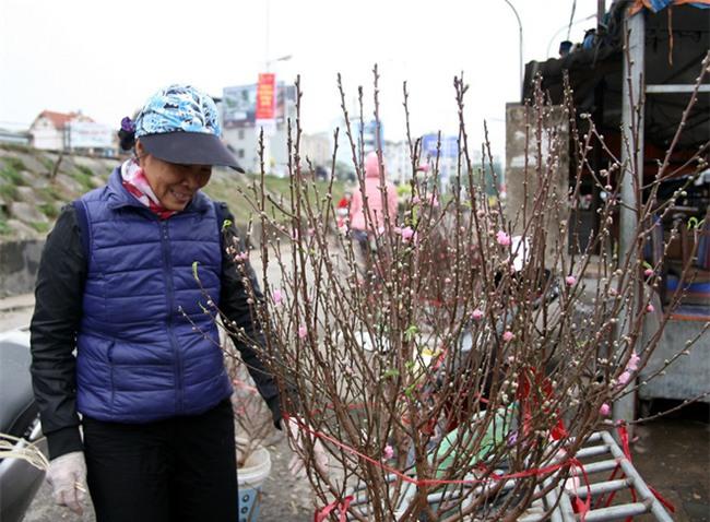 450 ngàn đồng/cành đào nở sớm, người Hà Nội mua chơi Tết Dương lịch - Ảnh 5.