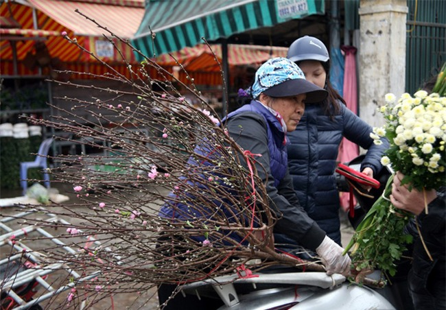 450 ngàn đồng/cành đào nở sớm, người Hà Nội mua chơi Tết Dương lịch - Ảnh 7.