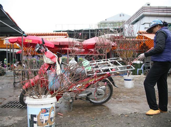 450 ngàn đồng/cành đào nở sớm, người Hà Nội mua chơi Tết Dương lịch - Ảnh 8.