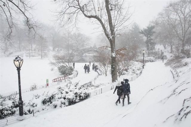 """New York như """"hành tinh khác"""" trong trận bão tuyết khiến nước Mỹ lạnh hơn sao Hỏa - Ảnh 8."""