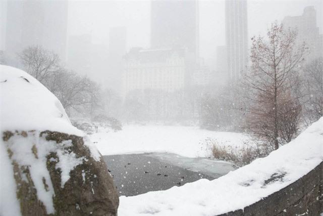 """New York như """"hành tinh khác"""" trong trận bão tuyết khiến nước Mỹ lạnh hơn sao Hỏa - Ảnh 9."""