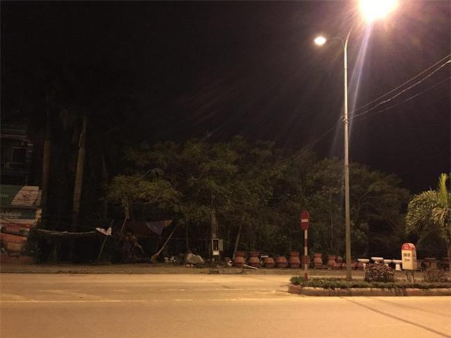Hà Nội: Truy tìm nhóm người trộm cây cảnh đi xe ô tô tải kéo lê chủ nhà 25m rồi bỏ chạy - Ảnh 2.