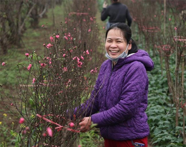 Đào nở sai thời điểm, rớt giá chỉ còn 50.000 đồng/cành, nông dân Nhật Tân như ngồi trên đống lửa - Ảnh 8.
