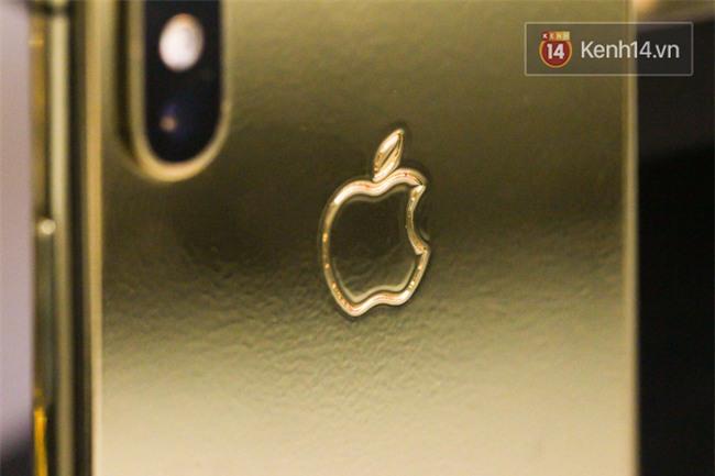 Đây là một chiếc iPhone X mạ vàng tại Việt Nam, đằng sau vẻ đẹp là sự đánh đổi - Ảnh 4.