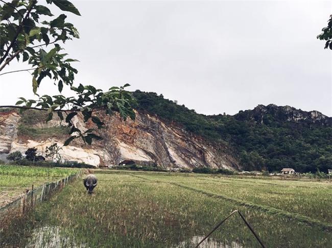 Khung cảnh đồng lúa xung quanh nhà củaHoàng Thuỳ - Tin sao Viet - Tin tuc sao Viet - Scandal sao Viet - Tin tuc cua Sao - Tin cua Sao