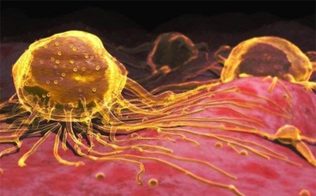 Uống hạt nano vàng: Không tác dụng chữa ung thư, thậm chí gây độc-2