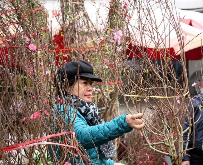 Hà Nội: Ngày mùng 1 âm lịch cuối cùng trong năm, hoa tươi đắt hàng - Ảnh 12.