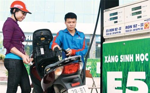 giá xăng,ron 92,giá xăng dầu,xăng ron 95,tăng giá xăng,xăng E5
