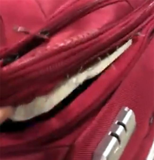 Khách hàng bức xúc vì vali bất ngờ rách toạc trước khi lên máy bay - Ảnh 1.