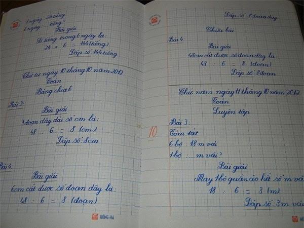 Chữ viết tay siêu đẹp của bé gái 8 tuổi người Việt gây xôn xao trên Reddit - Ảnh 2.