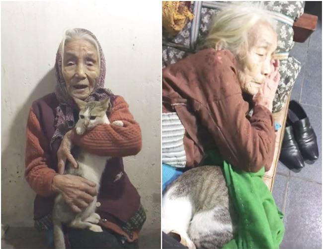 Clip dễ thương: Bà nội đắp chăn ủ ấm, liên tục nhắc cháu đừng động vào nó để mèo cưng ngủ ngon - Ảnh 2.