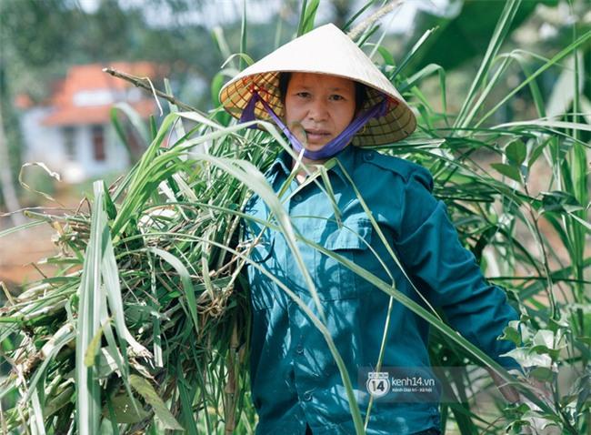 """Bố mẹ Bùi Tiến Dũng vẫn vui vẻ cắt mía, cho trâu ăn ở quê nhà: """"Việt Nam vô địch, chúng tôi sẽ mổ bò để liên hoan!"""" - Ảnh 5."""