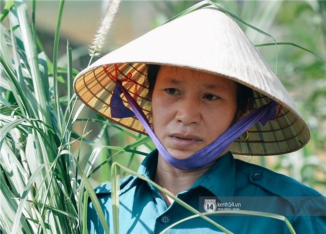 Bố mẹ Bùi Tiến Dũng vẫn vui vẻ cắt mía, cho trâu ăn ở quê nhà: Việt Nam vô địch, chúng tôi sẽ mổ bò để liên hoan! - Ảnh 4.