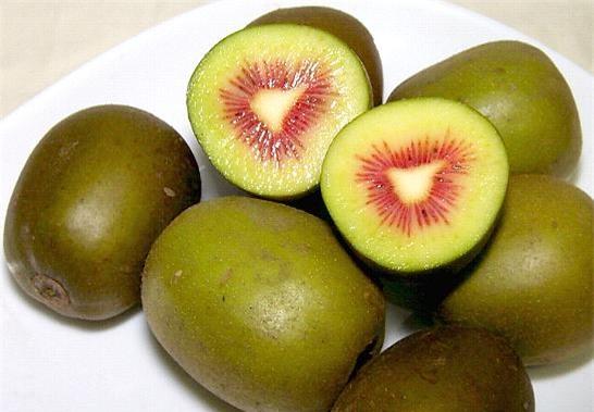 quả kiwi,hoa quả quý tộc,đặc sản nhà giàu,giới nhà giàu việt