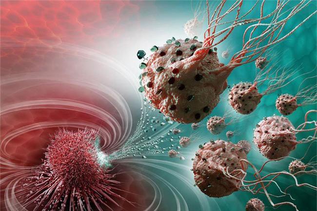 Thực phẩm con nhà nghèo được khoa học công nhận ngừa được ung thư-2