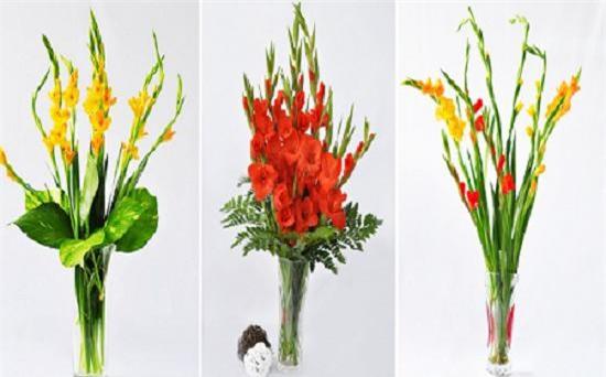 nhung loai hoa dep trung bay dip tet mang lai may man cho gia chu - 3