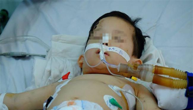 Bác sĩ Thanh Hồng: Kinh hoàng vì quá nhiều bệnh nhi bị chó cắn-1