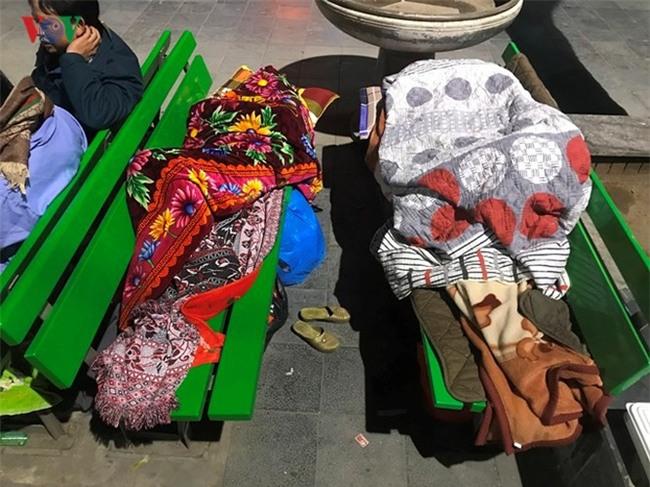 Xót xa cảnh người nhà bệnh nhân nằm co ro trong giá rét ở bệnh viện - Ảnh 8.