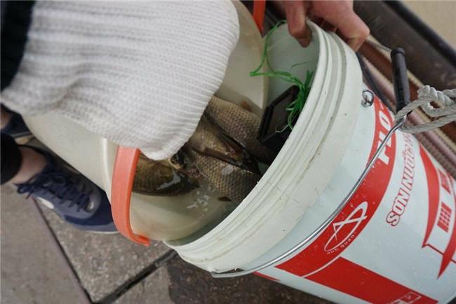 Thanh niên Hà thành kêu gọi Thả cá đừng thả túi nilon - Ảnh 4.