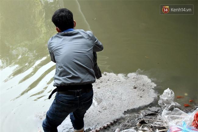 Clip: Cá chép tiễn Táo quân vừa bơi tới cầu Diễn đã bị chích điện lôi lên bờ - Ảnh 16.