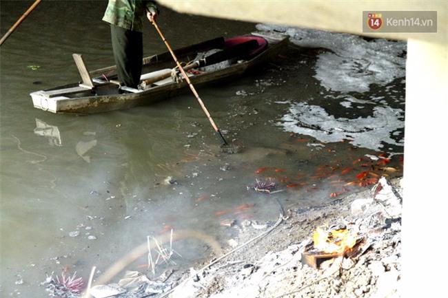 Clip: Cá chép tiễn Táo quân vừa bơi tới cầu Diễn đã bị chích điện lôi lên bờ - Ảnh 6.