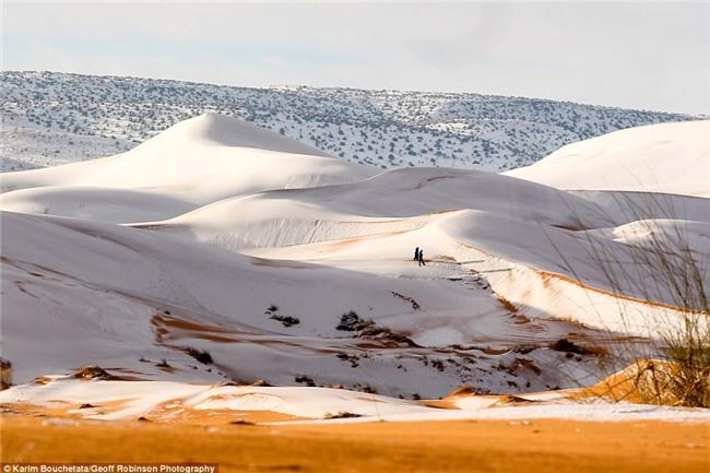Tuyết phủ trắng nhiều vùng sa mạc Sahara lần thứ 3 trong 40 năm, có nơi dày 40cm khiến người dân kinh ngạc - Ảnh 3.