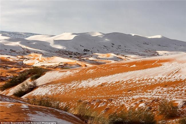 Tuyết phủ trắng nhiều vùng sa mạc Sahara lần thứ 3 trong 40 năm, có nơi dày 40cm khiến người dân kinh ngạc - Ảnh 5.