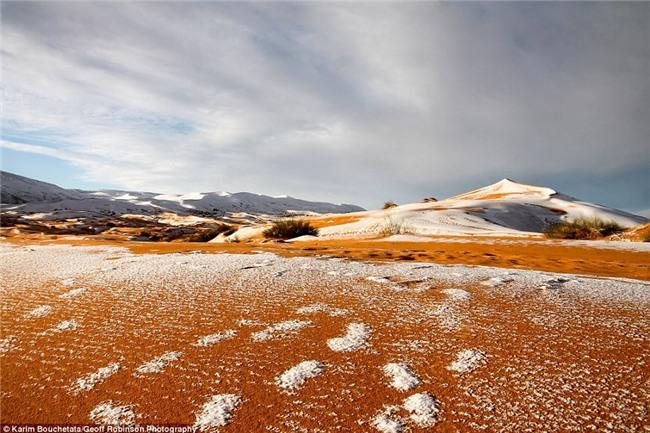 Tuyết phủ trắng nhiều vùng sa mạc Sahara lần thứ 3 trong 40 năm, có nơi dày 40cm khiến người dân kinh ngạc - Ảnh 6.