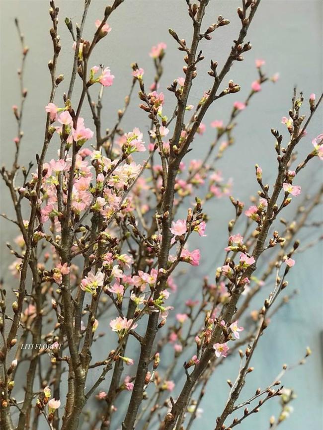 4 loại hoa nhập khẩu đắt tiền đang được chị em săn lùng ráo riết để trưng Tết 2018 - Ảnh 11.