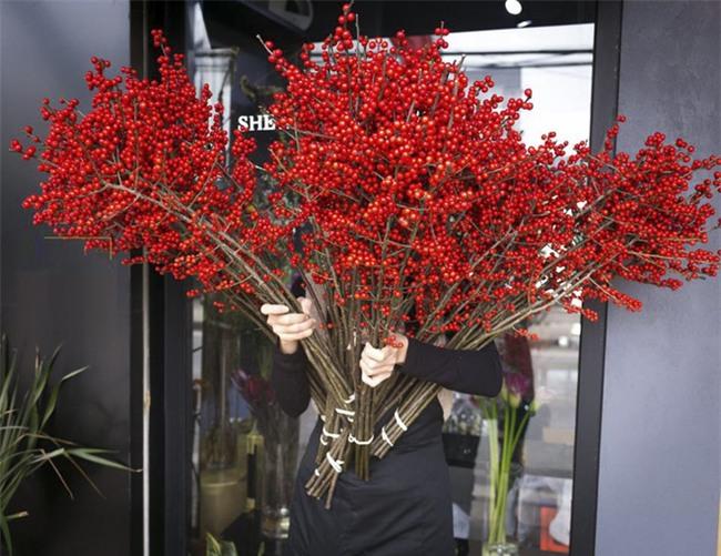 4 loại hoa nhập khẩu đắt tiền đang được chị em săn lùng ráo riết để trưng Tết 2018 - Ảnh 13.