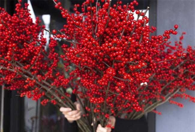 4 loại hoa nhập khẩu đắt tiền đang được chị em săn lùng ráo riết để trưng Tết 2018 - Ảnh 14.