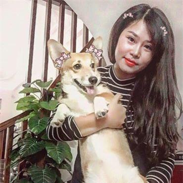 Cô gái liều mình cứu chó khiến dân mạng cảm động: Bọn trộm chó không xong với tôi đâu!