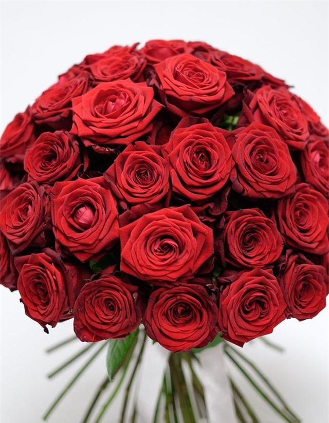 quà tặng Valentine,hoa hồng,Valentine,lễ tình nhân
