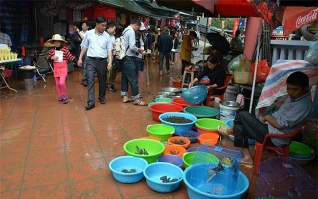Thị trường đồ phóng sinh Rằm tháng Giêng: Tiểu thương tăng giá vùn vụt vẫn đắt khách mua