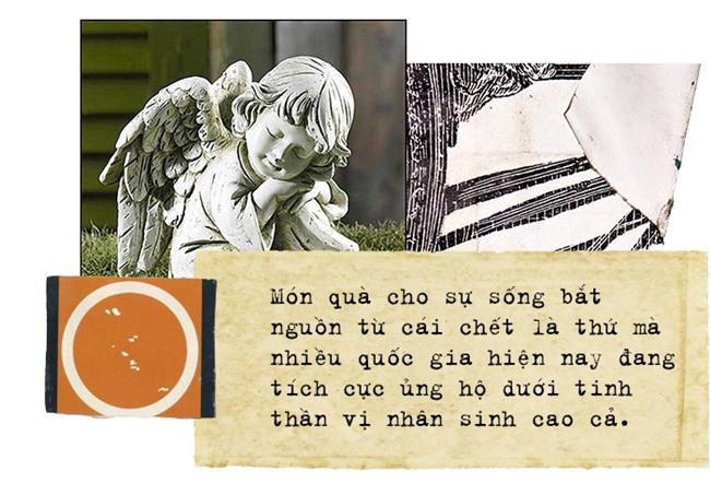 Chuyện về những thiên thần nhỏ hiến tạng, cứu người: Khi món quà cho sự sống được gửi về từ cõi chết - Ảnh 8.