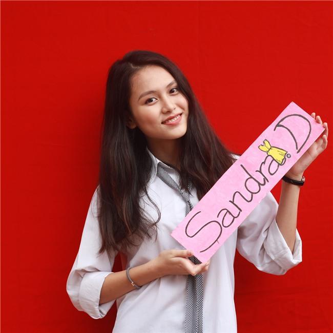Cô bạn trường Ams xinh như hot girl, nhận học bổng du học từ 8 trường ĐH trên thế giới - Ảnh 2.