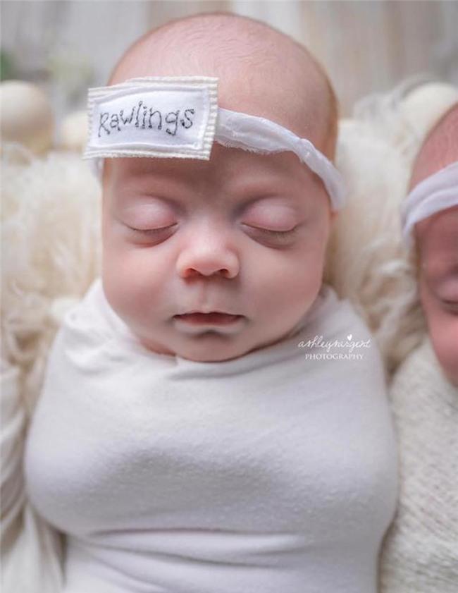 Hình ảnh về các bé sơ sinh được nhiếp ảnh giaAshley Sargent chụp lại và chia sẻ.