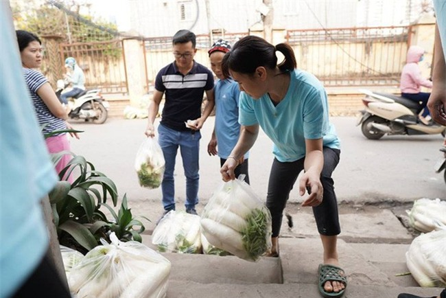 Hàng trăm người dân Hà Nội háo hức giải cứu củ cải trắng cho nông dân Tráng Việt - Ảnh 10.
