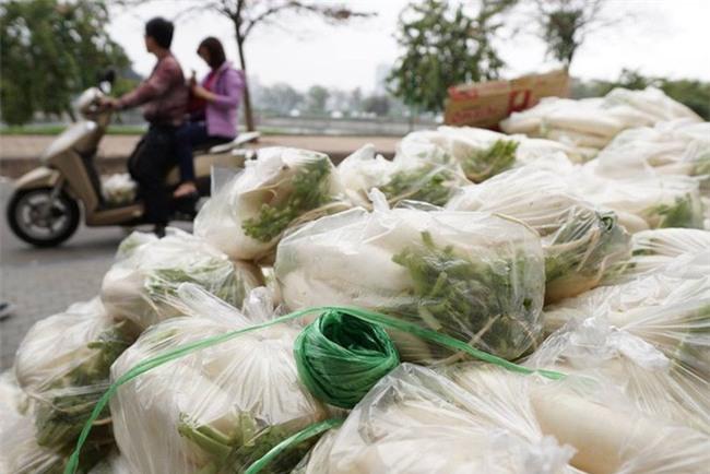 Hàng trăm người dân Hà Nội háo hức giải cứu củ cải trắng cho nông dân Tráng Việt - Ảnh 4.