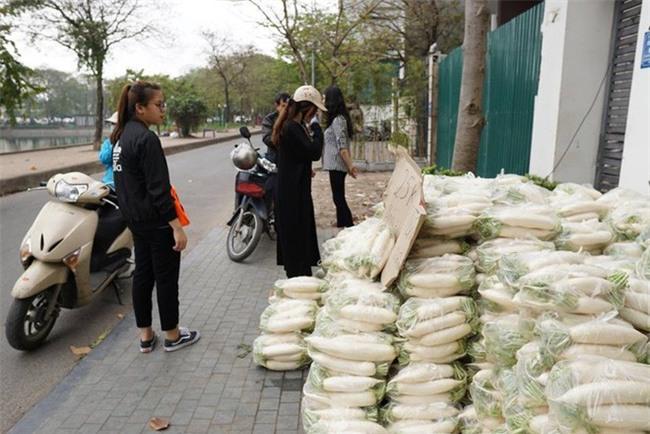 Hàng trăm người dân Hà Nội háo hức giải cứu củ cải trắng cho nông dân Tráng Việt - Ảnh 5.