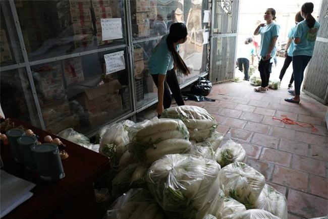 Hàng trăm người dân Hà Nội háo hức giải cứu củ cải trắng cho nông dân Tráng Việt - Ảnh 9.