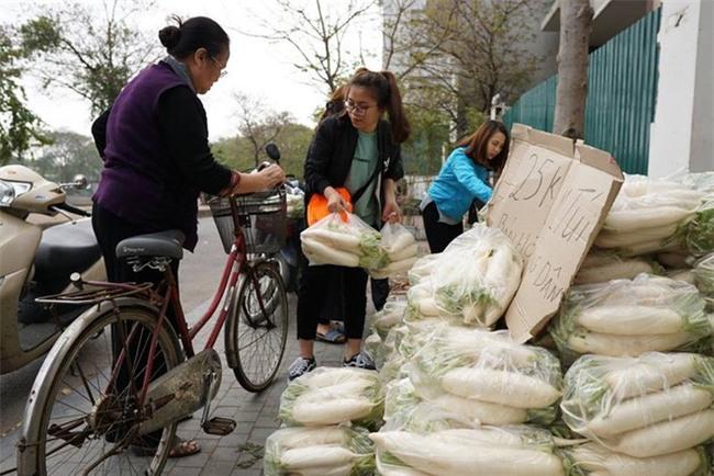 Hàng trăm người dân Hà Nội háo hức giải cứu củ cải trắng cho nông dân Tráng Việt - Ảnh 15.