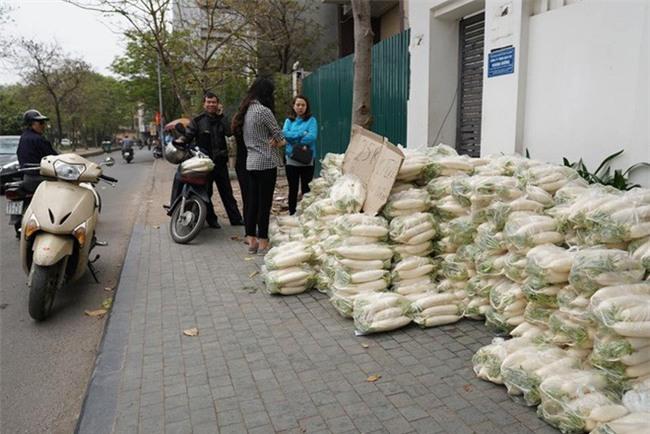 Hàng trăm người dân Hà Nội háo hức giải cứu củ cải trắng cho nông dân Tráng Việt - Ảnh 16.