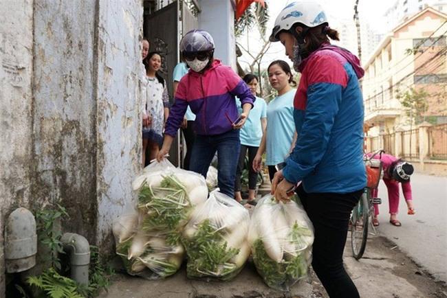 Hàng trăm người dân Hà Nội háo hức giải cứu củ cải trắng cho nông dân Tráng Việt - Ảnh 17.