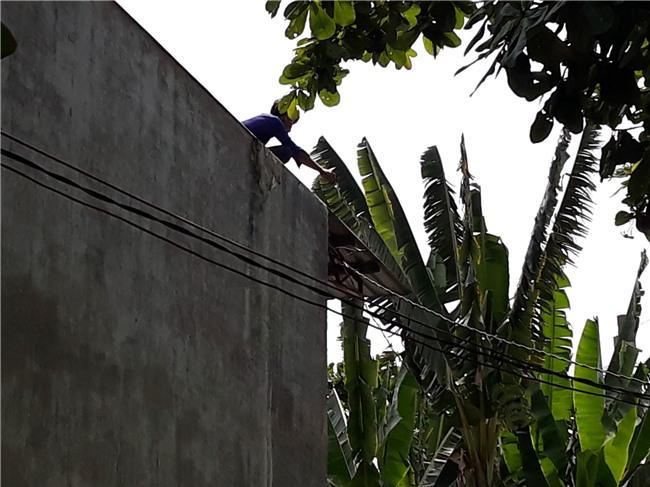 TP.HCM: Nam thanh niên nghi ngáo đá leo lên nhà dân cố thủ nhiều giờ, cầm gạch chống trả công an - Ảnh 1.