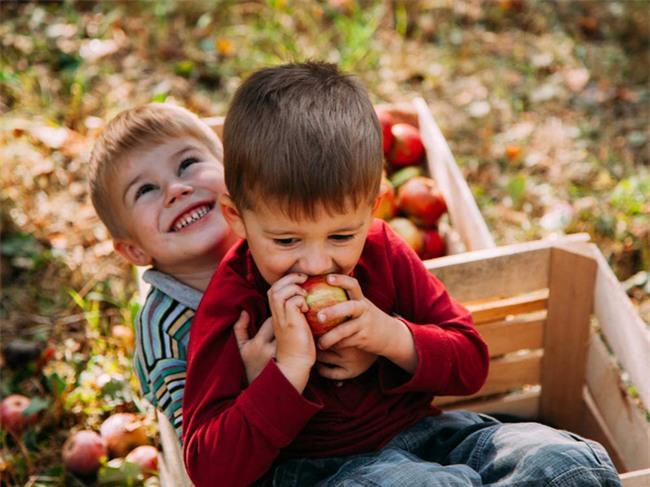 Từ bài học quả táo mẹ dạy khi bé, người thành công vang dội, kẻ vào tù ra khám - Ảnh 2.