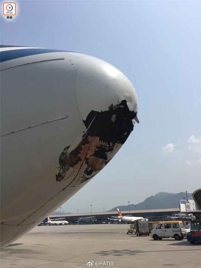 Nhận được điện khẩn về vụ va chạm giữa không trung, ai cũng giật mình khi biết hung thủ gây lõm đầu máy bay - Ảnh 1.